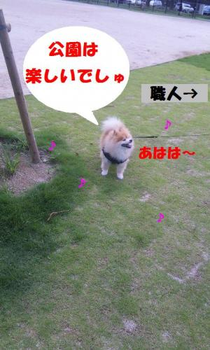 blog 122-001-1