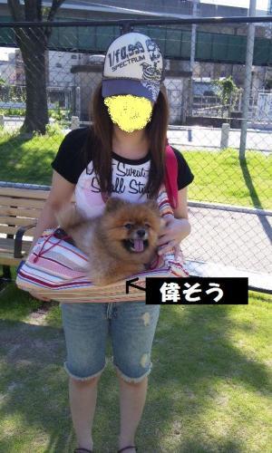 blog 139-001-1