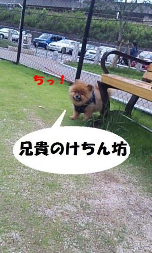 blog 058-1-1