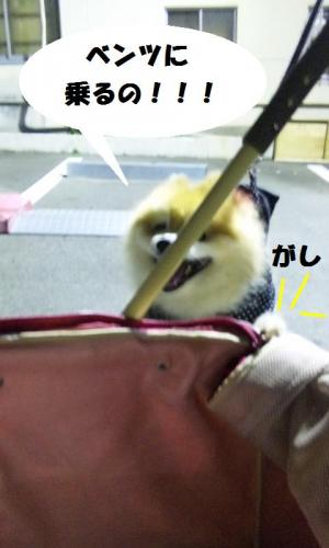 blog+193-1-1.jpg