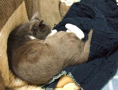 2セーター