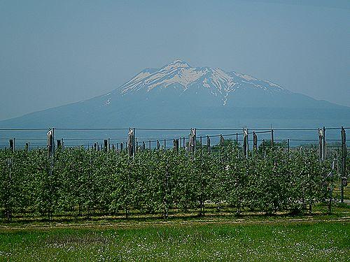 岩木山(五能線林崎付近)
