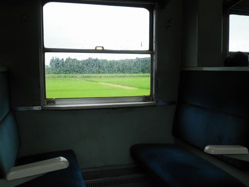 ひたちなか海浜鉄道・キハ205車内2