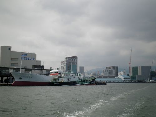清水港水上バス・3