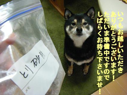 0419しばらく(2010 03 25)