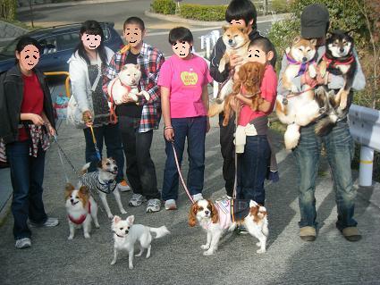 わんこお花見2010!72