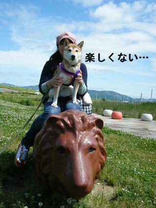 2010 05 29 河川敷21