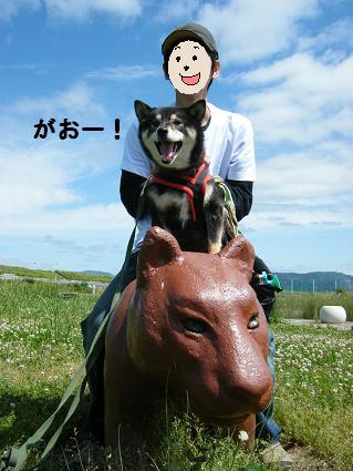 2010 05 29 河川敷24