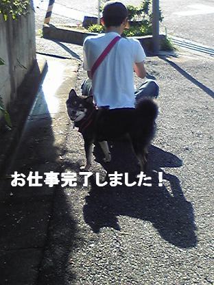 ストライキ 2010 07 17 2
