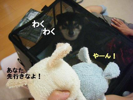 コピー ~ 2010 09 12 001