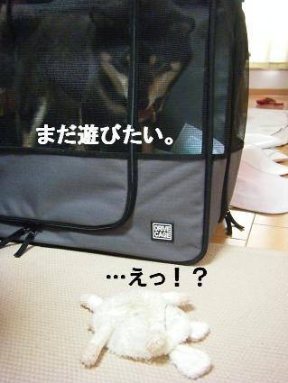 コピー ~ 2010 09 12 042