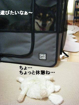 コピー ~ 2010 09 12 043