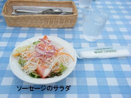 20101113琵琶湖7