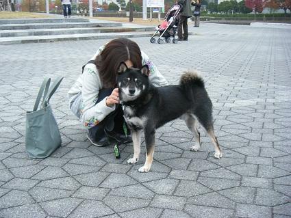 20101113琵琶湖23