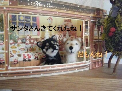 クリスマス20101