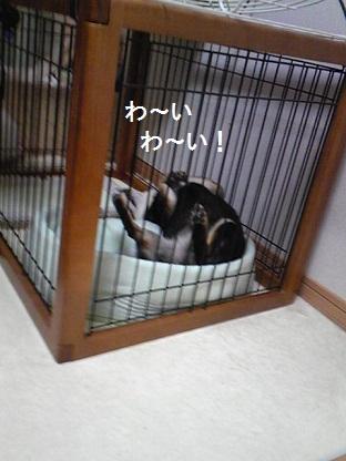 201010みつ2