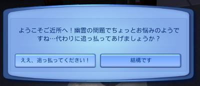20100115_05.jpg