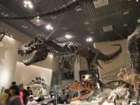 科学博物館2