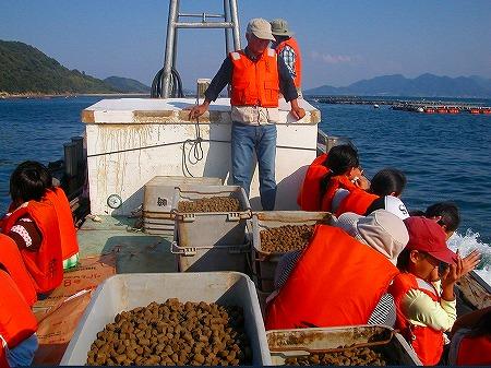 鯛の餌やり1