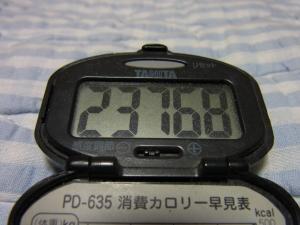110604-050万歩計(縮小)