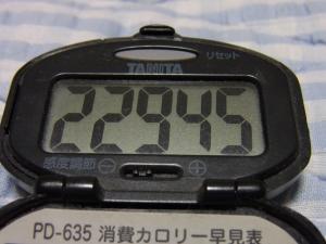 110611-050万歩計(縮小)