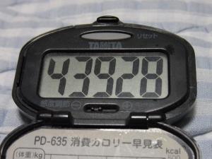 110619-070万歩計(縮小)