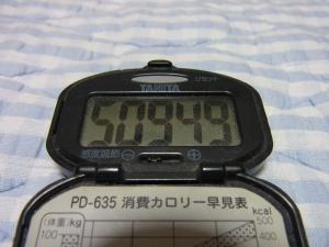 110626-050万歩計(縮小)