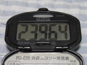 110702-060万歩計(縮小)