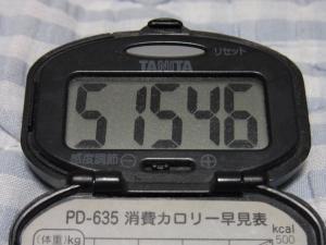 110703-050万歩計(縮小)