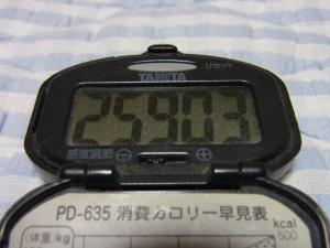 110709-070万歩計(縮小)