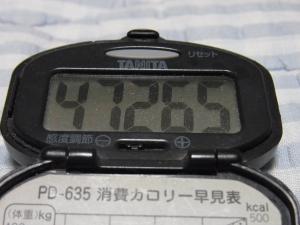 110717-050万歩計(縮小)