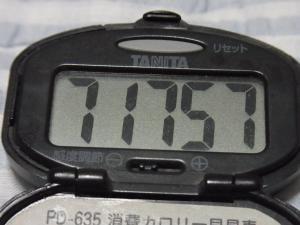 110718-050万歩計(縮小)