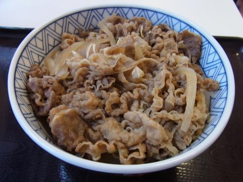 110722-102牛丼(縮小)