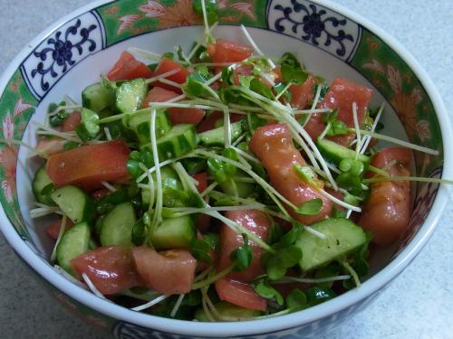 110730-020トマトときゅうりとかいわれのサラダ(縮小)