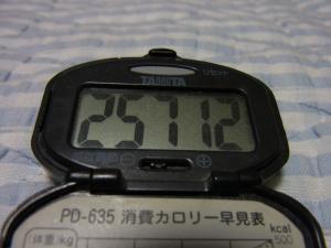 110806-050万歩計(縮小)