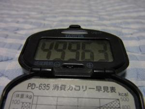 110807-050万歩計(縮小)
