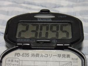 110813-050万歩計(縮小)