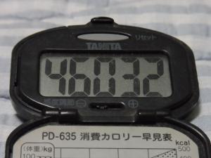110821-060万歩計(縮小)