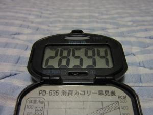 110825-040万歩計(縮小)