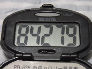 110827-060万歩計(縮小)