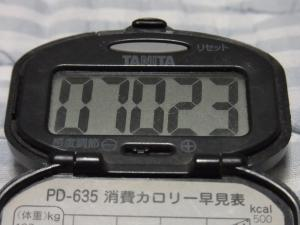 110828-050万歩計(縮小)