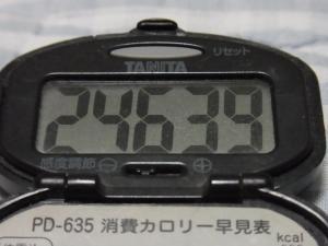 110903-050万歩計(縮小)