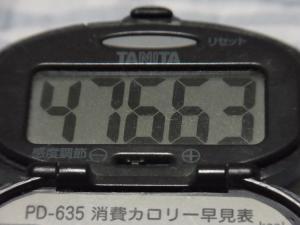 110904-060万歩計(縮小)