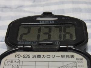 110910-050万歩計(縮小)