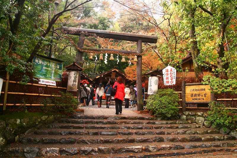 嵐山神戸ルミナリエ20091205 047
