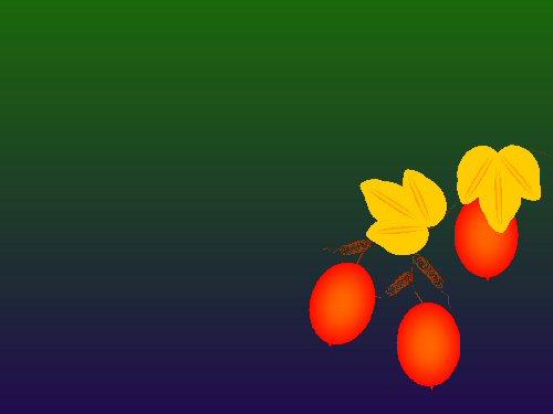 Knaka091025