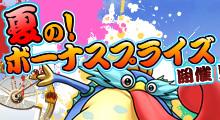 夏の!ボーナスプライス開催!
