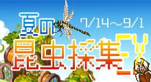 夏の昆虫採集EX!!