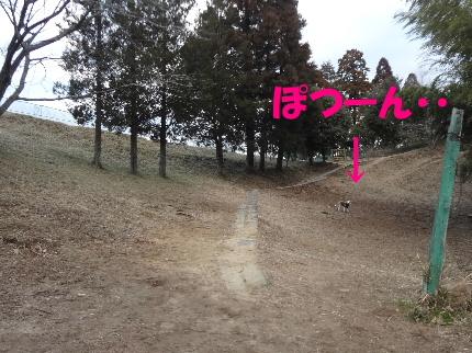 20120216mocha3.jpg