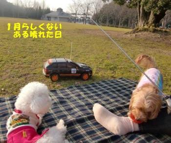 とんぼいけ公園